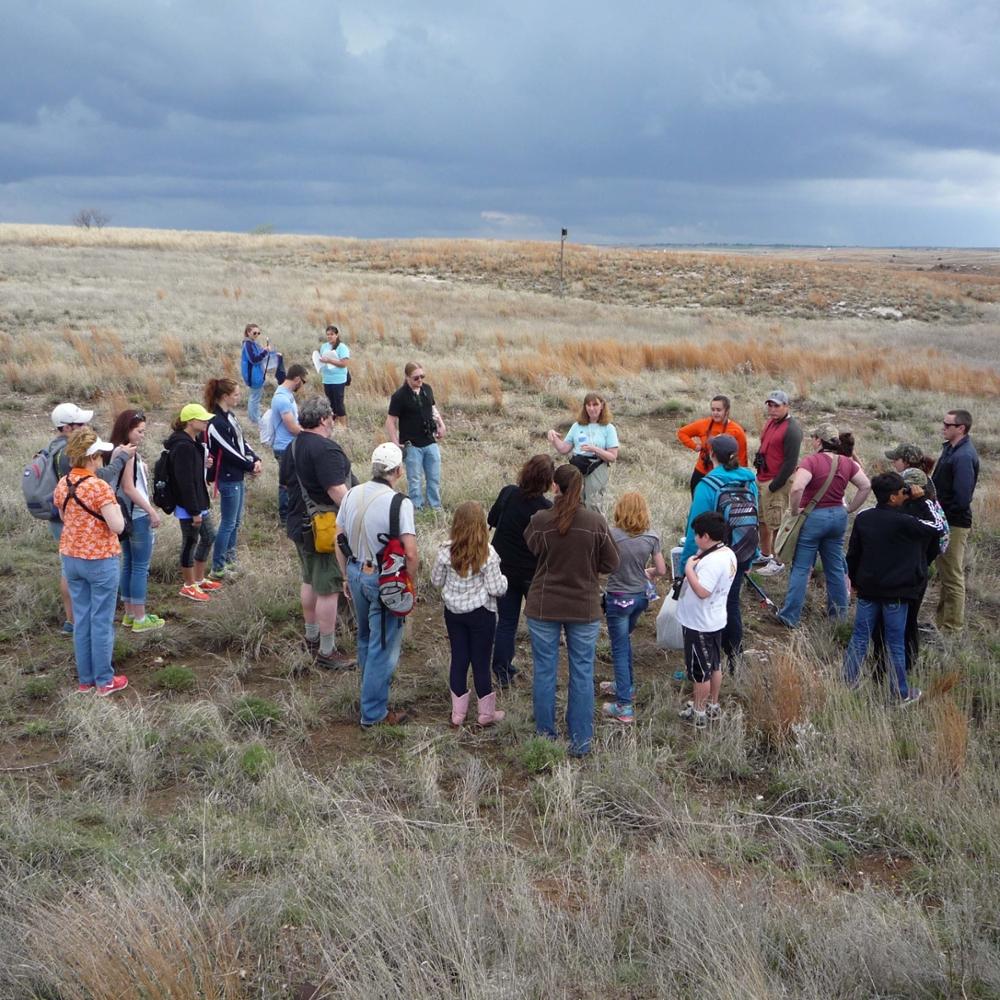 group activity at Selman