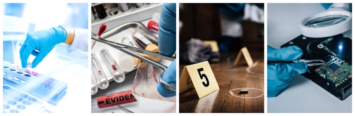 photo of forensic tasks