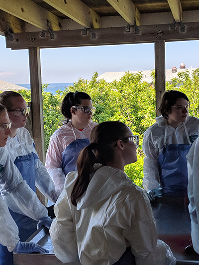 Lab Students at SHOALS