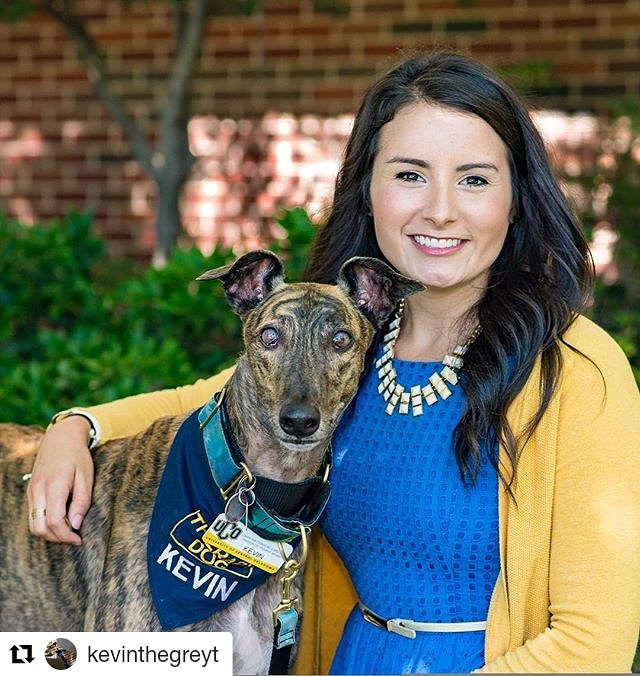 greyhound employee human resources