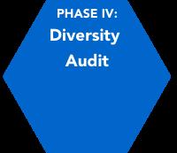 Phase IV: Diversity Audit