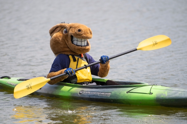 Buddy the Broncho on a kayak