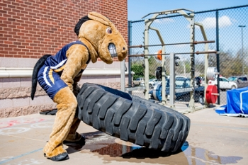 Buddy the Broncho flipping tire