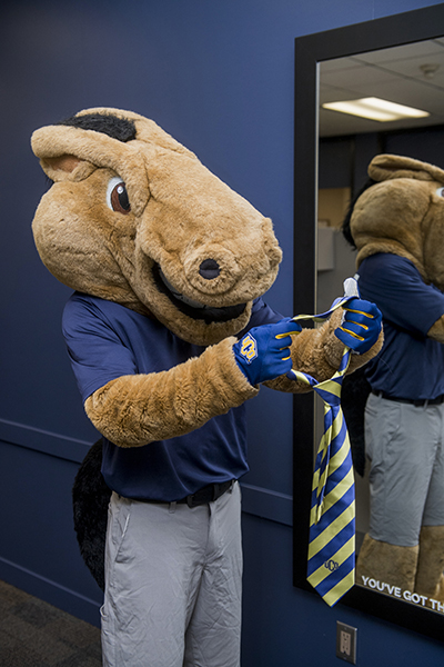 buddy broncho putting on a tie