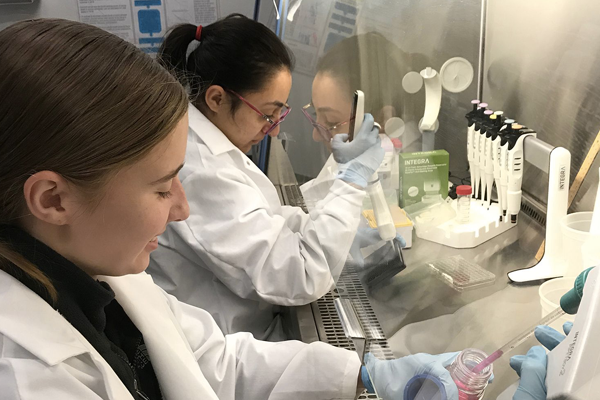 Photo of students in a lab